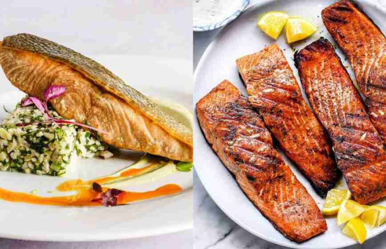 Different type of fishes which are tasty and healthy